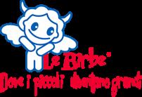 Le Birbe Asilo Nido e Scuola materna a Torino